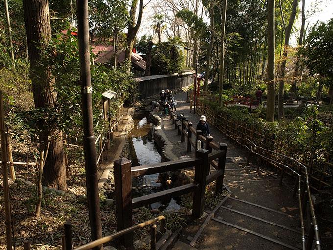 95d71ff9105e8ff103705bc4face4a48 自然な「涼」を楽しもう。東京都内のひんやりスポット5選