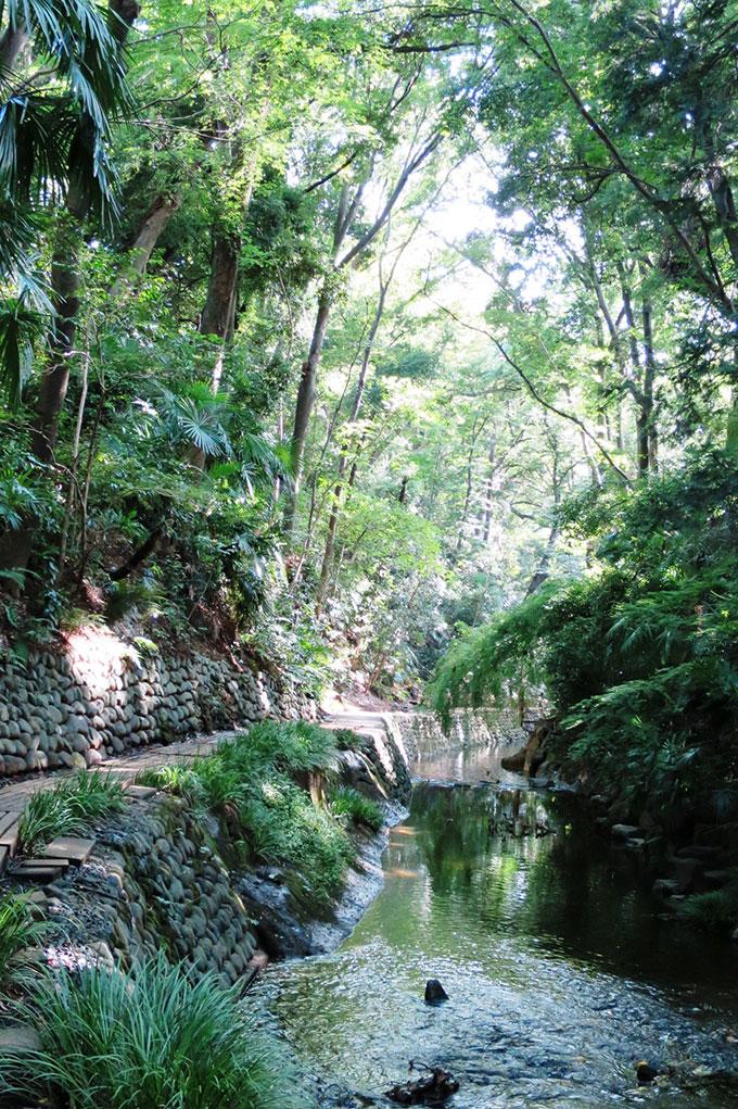 fcdea2bb398fe8b56aa9251ae52ab027 自然な「涼」を楽しもう。東京都内のひんやりスポット5選