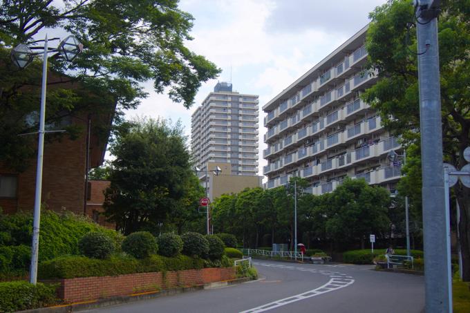 nishikasai 03 「住みたい街ランキング」には入っていないけど、絶対住むべき街シリーズ 〜第8回:西葛西〜