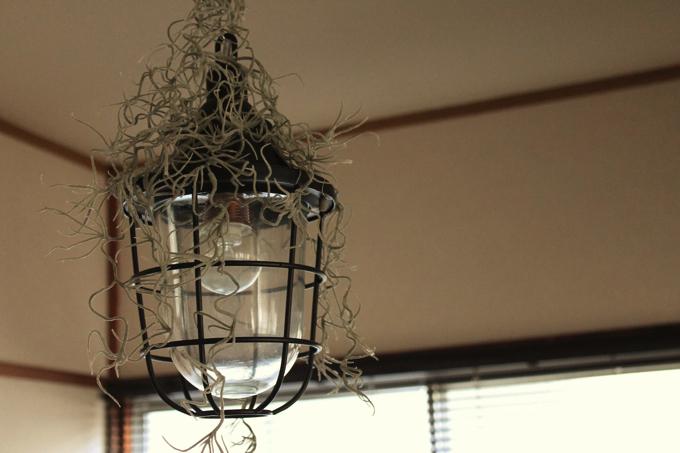 IMG 77141 【第3回】突撃! ワンルーム王子~築50年のアパートを活かした音楽と映画の家~
